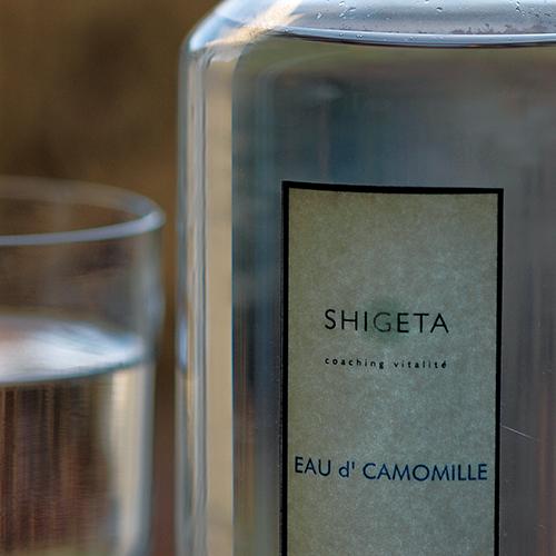 HISTORY of SHIGETA